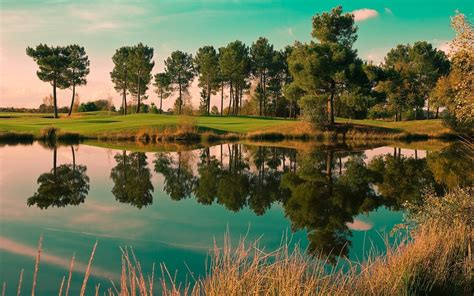Nature Landscape Reflection Trees Pond Wallpapers Hd