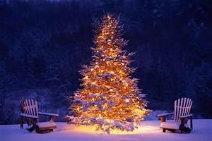 Christmas, U0026, Winter, Scenes, 2017