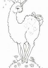 Llama Coloring Pages Alpaca Cartoon Llamas Drawing Bohemian Peru Animal Getdrawings Printable Print Mama Getcolorings Sketch Template sketch template