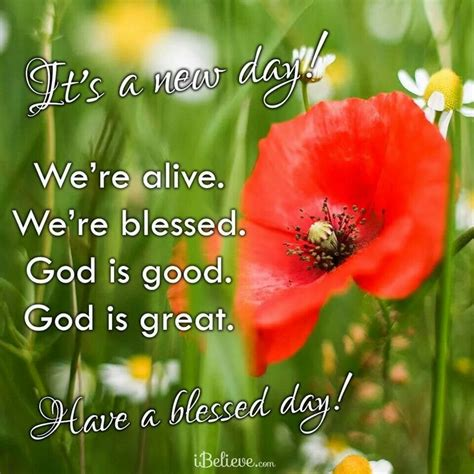 day   blessed  daily blessings