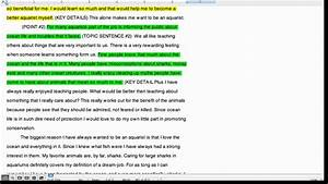 cheap professional essay writers creative writing strategies list of phd programs in creative writing