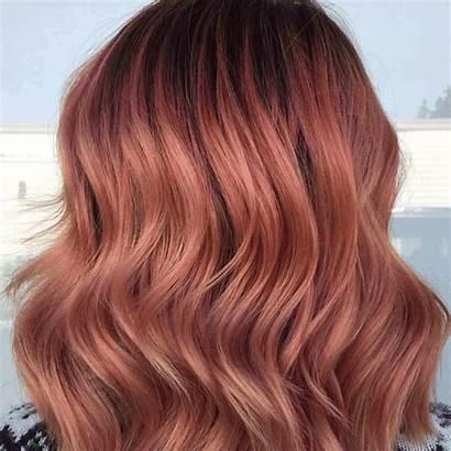 Hair Fall Autumn Loreal Animated Service Gray