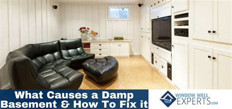 What Causes A Damp Basement And How To Fix It  Window. Cheap Living Room Furniture Sets Under 500. Energy Efficient Room Heater. Mail Order Catalogs Home Decor. Decorative Molding Appliques. Decorative Street Lighting Fixtures. Ikea Round Dining Room Table. Word Wall Decor. Laundry Room Ceiling Lights
