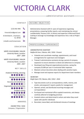 Resume Template For It Professional by How To Write A Career Objective 15 Resume Objective