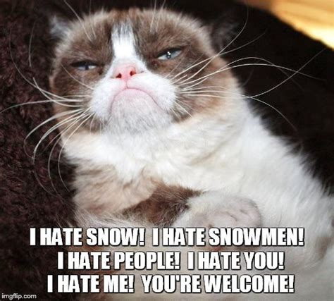 Hate Snow Meme - grumpy cat snow meme 28 images grumpy cat let it snow winter sucks social anxiety forum