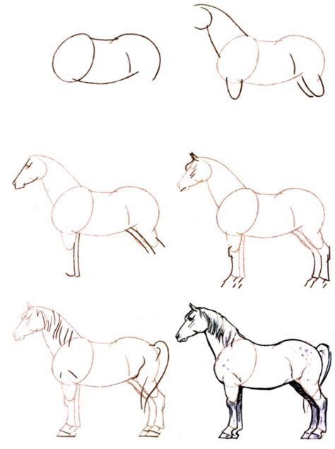 comment accrocher un fer a cheval comment dessiner un fer a cheval