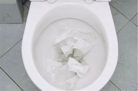 clogged toilet     easily unclog