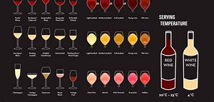 A Beginner U0026 39 S Guide To Wine - Scribblelive