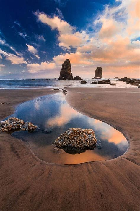 i swear this looks like an orca low tide cannon beach