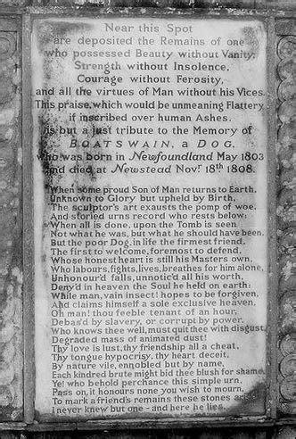Boatswain Byron by Boatswain In Memoriam By Lord Byron Literary Dogs
