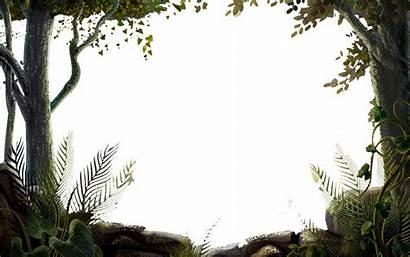 Nature Transparent Clipart Background Frames Forest Tree