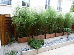 bac pour planter des bambous pivoine etc With bac pour bambou terrasse