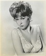 49 Hot Pictures Stella Stevens To Prove Why The American ...