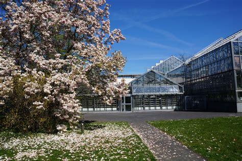 Botanischer Garten Leipzig Adresse by Impressionen Aus Dem Botanischen Garten Der Universit 228 T