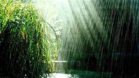 Rainy Background Rainy Background 183 Free Beautiful Hd