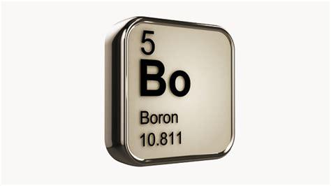 Brains, Bones, and Boron