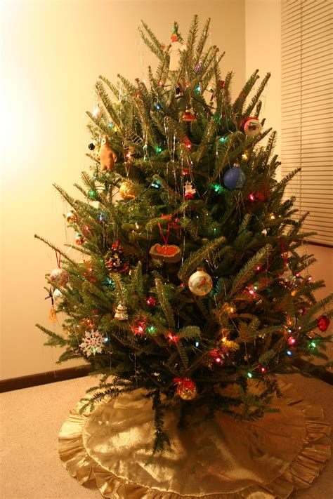 christmas tree minnesota prairie roots