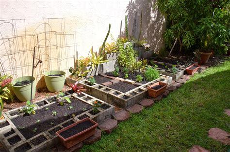 Dragonfly Garden Winter Vegetable Gardening Begins