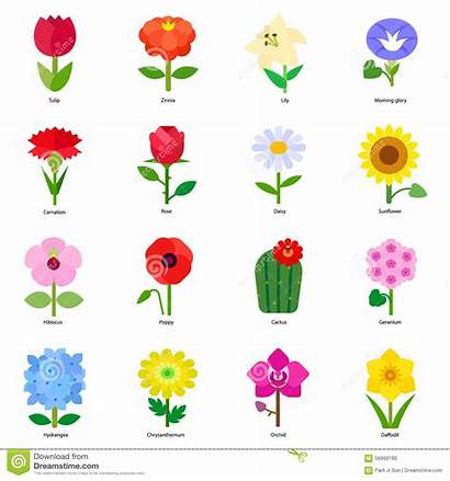 Flowers Common Florist Icons