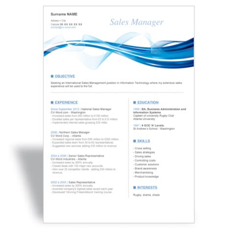 word cv resume template sales manager