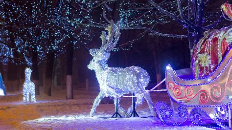 boerner botanical gardens  host holiday light display