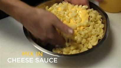 Cheese Mac Burger Delicious Bun Sauce Eight