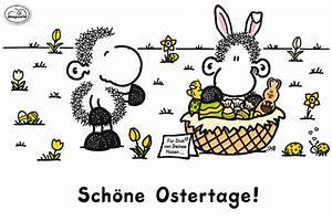 Schöne Ostertage Bilder : frohe ostertage euch allen sheepworld ag pinterest ostern ostern 2017 und ostern lustig ~ Orissabook.com Haus und Dekorationen