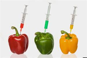 Tips To Improve Healthy Life  Genetically Modified Foods