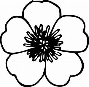 Simple Flower Drawings In Black And White - Drawing Sketch ...