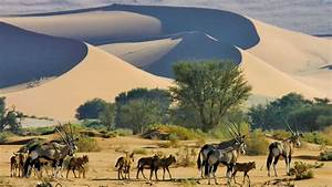 Namibia tours in kuoni travel