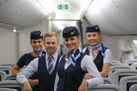 cabin crew member cabin crew cv writing and emirates etihad qatar cabin