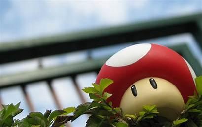 Mario Super Wallpapers Mushroom Play