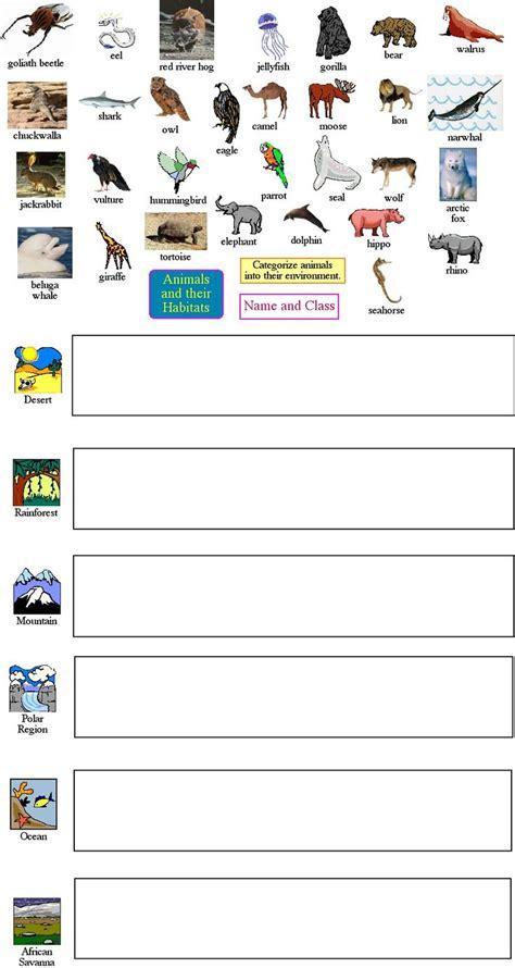 animal worksheet   animal taxonomy worksheet
