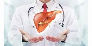 От печени препараты от жирового гепатоза печени