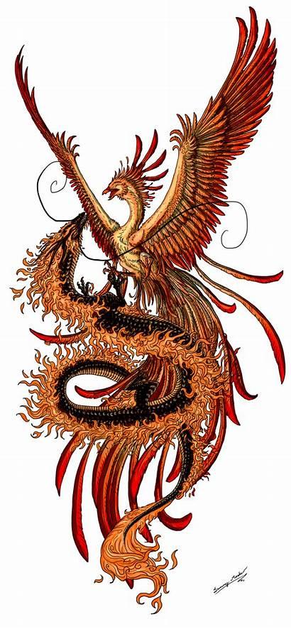 Dragon Tattoos Japan Chinese Clip Phoenix Clipart