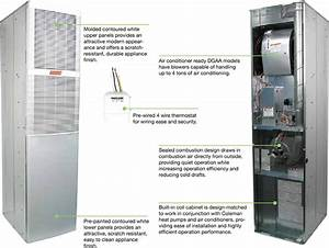 Gas Forced Air Furnace Wiring Diagram  Gas  Free Engine  Electric Boiler Furnace