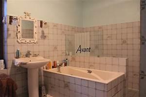 Carrelage Salle De Bain Couleur : peinture douche salle de bain ides ~ Melissatoandfro.com Idées de Décoration