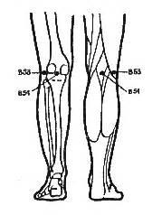 Наколенник при болях в коленном суставе