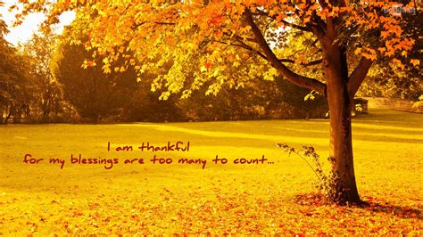 Background Home Screen Fall Thanksgiving Wallpaper by Thanksgiving Blessings Wallpapers Top Free Thanksgiving