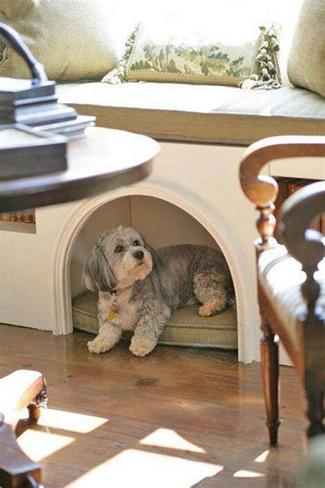 cool indoor dog houses home design  interior
