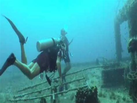 scuba diving  st thomas travel world space