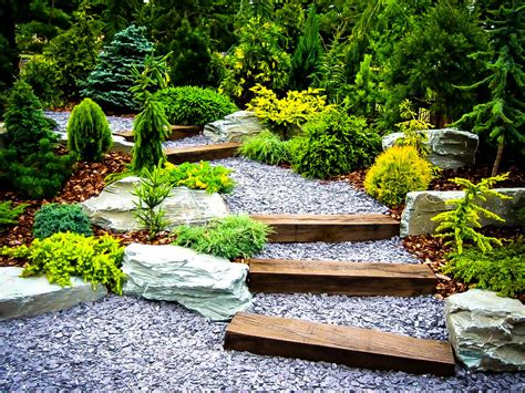 Star Furniture San Antonio by Plants For A Japanese Garden The Tree Center
