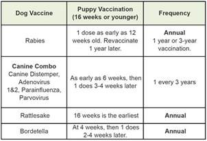 cats schedule vaccine chart for dogs and cats pet vaccine information
