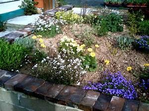 Parterre De Plante : conseillez moi un massif de plantes vivaces ~ Melissatoandfro.com Idées de Décoration