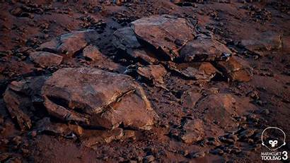Progress Soil Rock Composition Texture Ground Environment