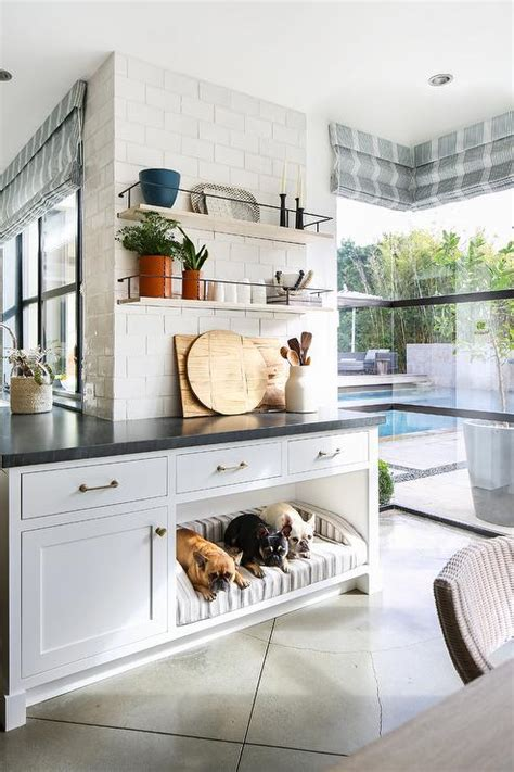 inset mirrored cabinets  dog bed transitional bedroom