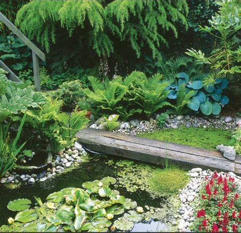 small garden with pond garden types and styles small garden ponds garden ponds and small gardens