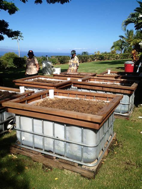 Wicking Raised Beds Self Watering By Piilani Kope Farm