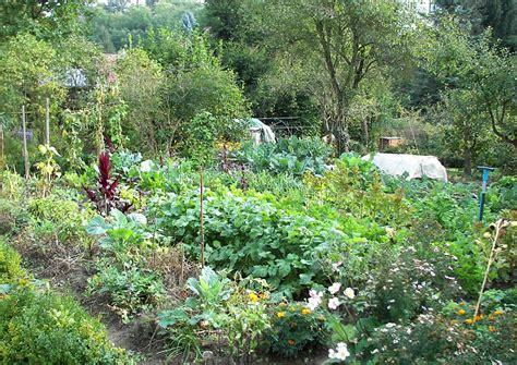 Der Garten Anstiftung Zur Selbstversorgung by Obst Und Gem 252 Se Die Wichtigsten Zur Selbstversorgung