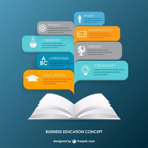 business education infographic vector